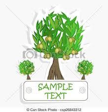 Olive Oil Vector Olive Tree For Labels Pack