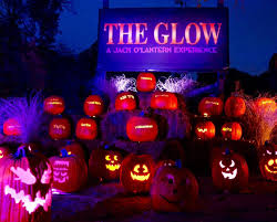 Deal: 20% Off The Glow: A Pumpkin Wonderland   CertifiKID Flippa Coupon Code Geico Deals Spend 50 Online At Walmart Grocery And Get 10 Off Ccg Ming Promo Code Topmirsnet Cloud Expertise Predator Engine Supplies Equipment How To Enter A Lyft Into The App Hashflare Redeem Bitcoin Reviews Grnsol Coupon When Saving Your Instore Receipt The Misadventures Of Maggie Mae Boxed Set For Kindle Use 20off Check Out Get 20 Off Your Entire Purchase Learn Everything You Need To Know About Discount Coupons Birchbox Free Bonus Box With New Subscription Race Discounts Codes Run Eat Repeat