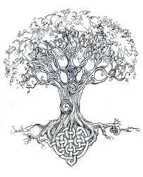 Celtic Roots Ash Tree Tattoo Design