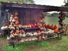 Pumpkin Patch Near Pensacola Fl by 34 Best Favorite Places U0026 Spaces Images On Pinterest A Legend