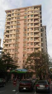 100 Apartment In Hanoi Serviced For Rent In Ba Nh The New