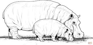 Click The Baby Hippo With Mother Coloring Pages