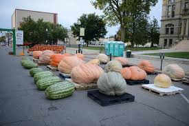 Pumpkin Festival Cleveland Ohio by Operation Pumpkin Hamilton Ohio Things To Do See Experience