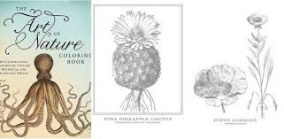 The Art Of Nature Coloring Book
