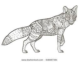 Fox Animal Coloring Book For Adults Vector Illustration Anti Stress Adult