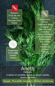 comment cuisiner le cresson comment utiliser le basilic en cuisine le basilic basilic et herbe