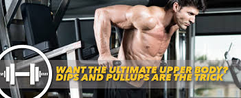 Want The Ultimate Upper Body Dips And Pullups Are The Trick