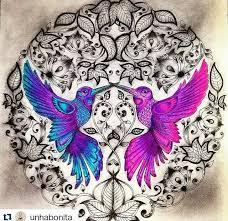 Garden Pictures Birds Doodle Art Hummingbird Coloring Books Colouring Secret Gardens Johanna Basford Zentangles