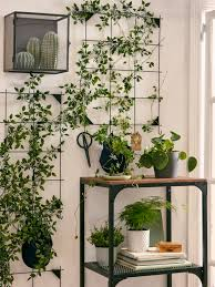 natur in den eigenen vier wänden ikea