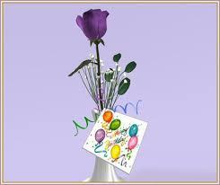 Happy birthday purple rose closeup 001