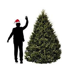 7 Ft Slim Christmas Tree by Jac O U0027 Lyn Murphy Candy Christmas Trees Christmas Ideas