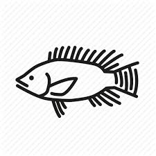 Fish Fishes Fishing Ocean Life Sea Creature Tilapia Icon