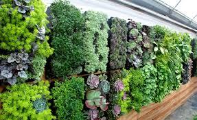 Diy Living Wall Planter Home Design Ideas and