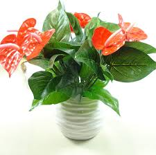 Anthurium Green Potted Flowers Indoor Plants Balcony Office Desktop Artificial Bonsai