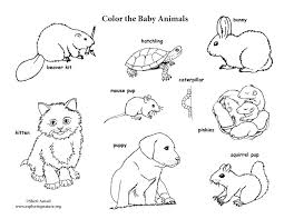 Farm Animal Coloring Pages Pdf Baby Page Animals Alphabet