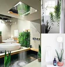 Plants In Bathroom Images by Wee Birdy The Insider U0027s Guide To Shopping Design Interiors