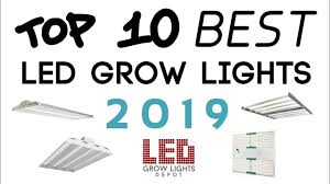 Green Light Depot Coupon Codes - Pogot.bietthunghiduong.co Wayfaircoupon Hashtag On Twitter Shoppers Drug Mart Canada Friends Family Event Save 20 Goombas Pizza Coupon Code Cvs Discount Printable Coupons Things Membered Off Coupons For Wayfair Promo Code Off Rose Mitoq Promotion 2018 Sport Chek 2day Sale Off With Codes Discount Coupon Posts Facebook Overstock 120 Shoprite Online Upto On Wellness Tours Enjoy Our More G Adventures Couponswindow Couponsw
