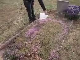 ideas for graveside decorations gravesite decoration ideas ra mo ba noi