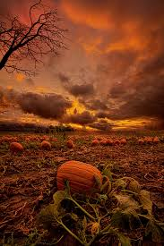 Grims Pumpkin Patch Pa by I U0027ve Learned There Are Three Things You Don U0027t Discuss With People