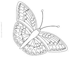 Cute Butterfly Coloring Pages Picture Of A Free