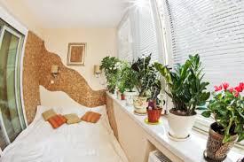 pflanzen im schlafzimmer schädlich das sollten sie dabei