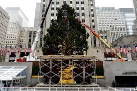 Rockefeller Plaza Christmas Tree by The Secret Journey Of The Rock Center Christmas Tree New York Post