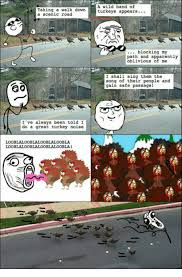Apparently Memes And Singing A Wild Band Of Taking Walk Down Turkeys