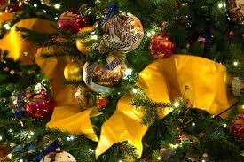 What Is The Best Christmas Tree Variety by What To Do With That Leftover Christmas Tree Give It To The Fish