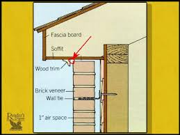 how to get rid of wasps at the soffits