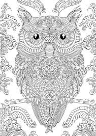 Pictures Coloring Complex Owl Pages New At 30 Adult Cartoons Printable