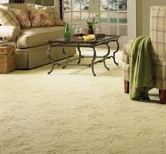 diy carpet deodorizer room carpet living room carpet and carpet