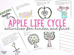 Life Cycle Of A Pumpkin Seed Worksheet by A Week Jam Packed With Apple Life Cycle Fun Education To The Core
