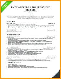 Writing A Resume Summary Examples Of Professional For Resumes Sample With Statement