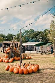 Boyd Tx Pumpkin Patch by 32 Best Mv 1 Images On Pinterest Vehicles We Have And Health