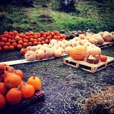 European Countries That Dont Celebrate Halloween 5 best halloween destinations in europe