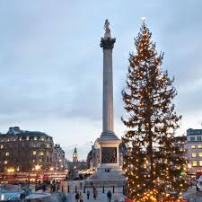 Best Christmas Tree Type Uk by When Should You Put Your Christmas Tree Up Xmas Tree Dates