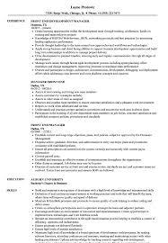 Download Front End Manager Resume Sample As Image File