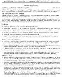 It Manager Resume Sample Perfect Best Resumes 2016 Writing Ea I119411