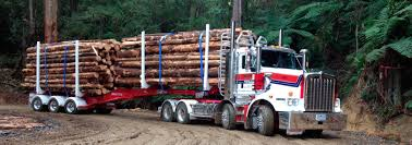 Asset Forestry East Texas Truck Center Used Trucks For Sale 2016 Kenworth W900l Logging For Sale Rickreall Or Cc Page 4 Bc Logging 19 Jf T800 Peterbilt Peterbilt Log Trucks For Sale In Oregon Archives Best Trucks 2002 Mack Cl713 Tri Axle Log By Arthur Trovei Sons Hayes Manufacturing Company Wikipedia Kraft 3 Axle 1999 400 Gst At Star Loggingtrucks Mack Lt Double Edge Equipment Llc Asset Forestry Western 6900xd Super Heavy Duty Applications
