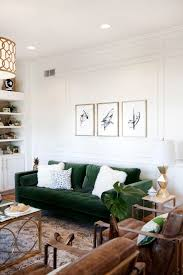Green Velvet Sofa With White Fur Pillows And Brown Leather Beautiful Living Room For Seats Lush Sofas In Cozy Rooms How To Decorate Interior Design Drawing