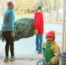 Eustis Christmas Tree Farm by Home