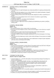 Download Gameplay Programmer Resume Sample As Image File