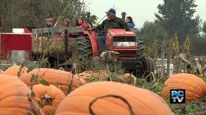 Pumpkin Picking Nj by Meet The Farmer The Modern Day Pumpkin Patch Youtube