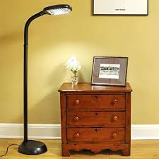 Verilux Floor Lamp Bulbs by Natural Spectrum Floor Lamp U2013 Luckyio Me