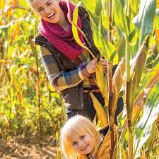 Pumpkin Patch Daycare Murfreesboro Tn by Lucky Ladd Farms Eagleville Tn Top Tips Before You Go With