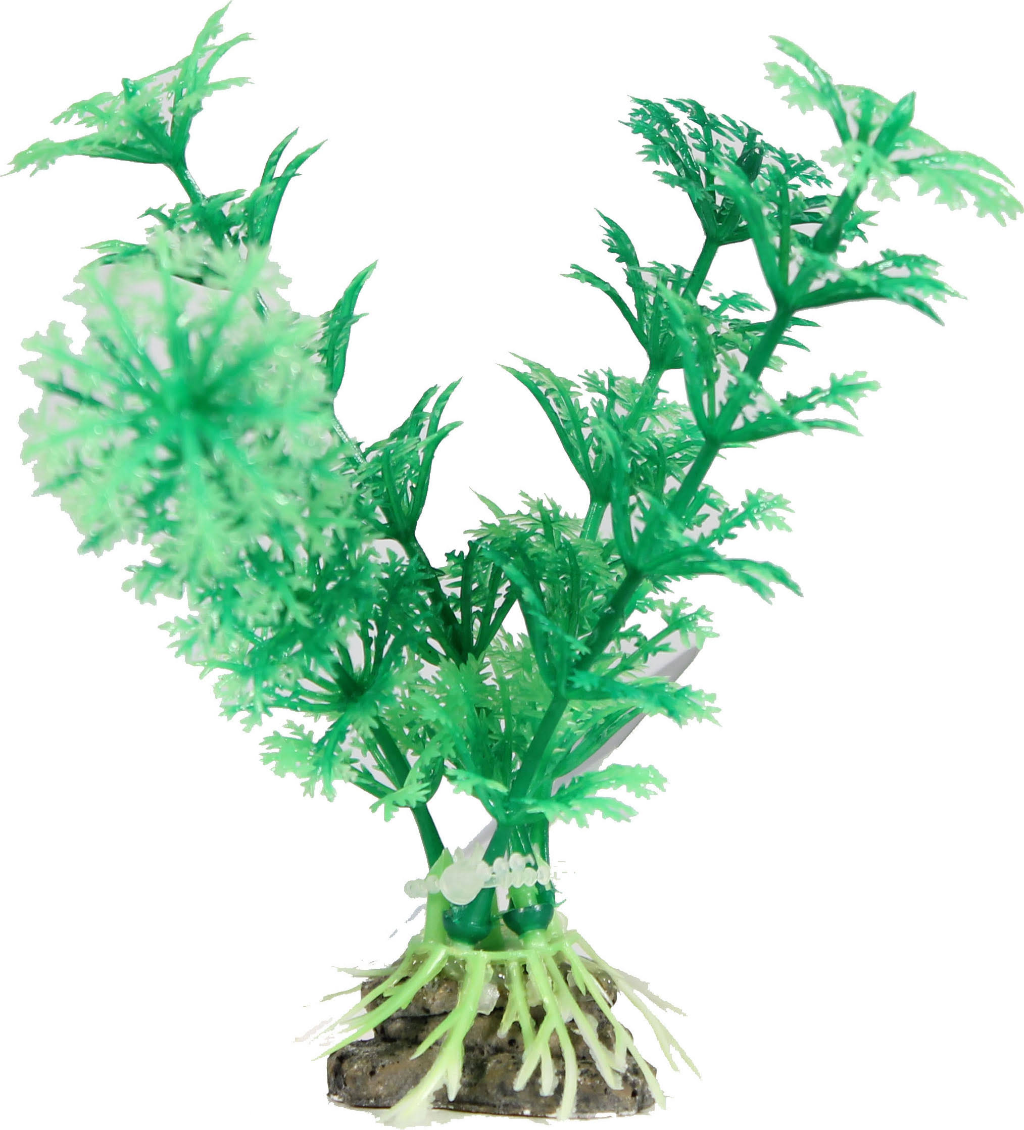 Elive Natural Elements Cabomba Plant Green 4 inch