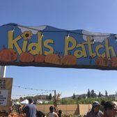 Pumpkin Patch Cal Poly Pomona by Cal Poly Pomona Pumpkin Festival 277 Photos U0026 129 Reviews