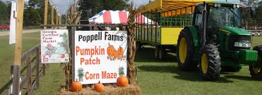 Pumpkin Farms In South Georgia by Poppell Farms Corn Maze Pumpkin Patch Haunted Forest Produce