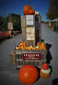 Pumpkin Picking Farms In Lancaster Pa festivals u0026 activities brecknock orchard lancaster county pa