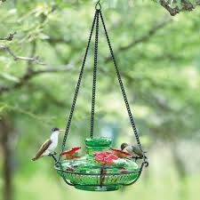 Bloom Perch Hummingbird Feeder Yard Envy